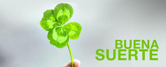 Plantas para la buena suerte plantas - Para la buena suerte ...