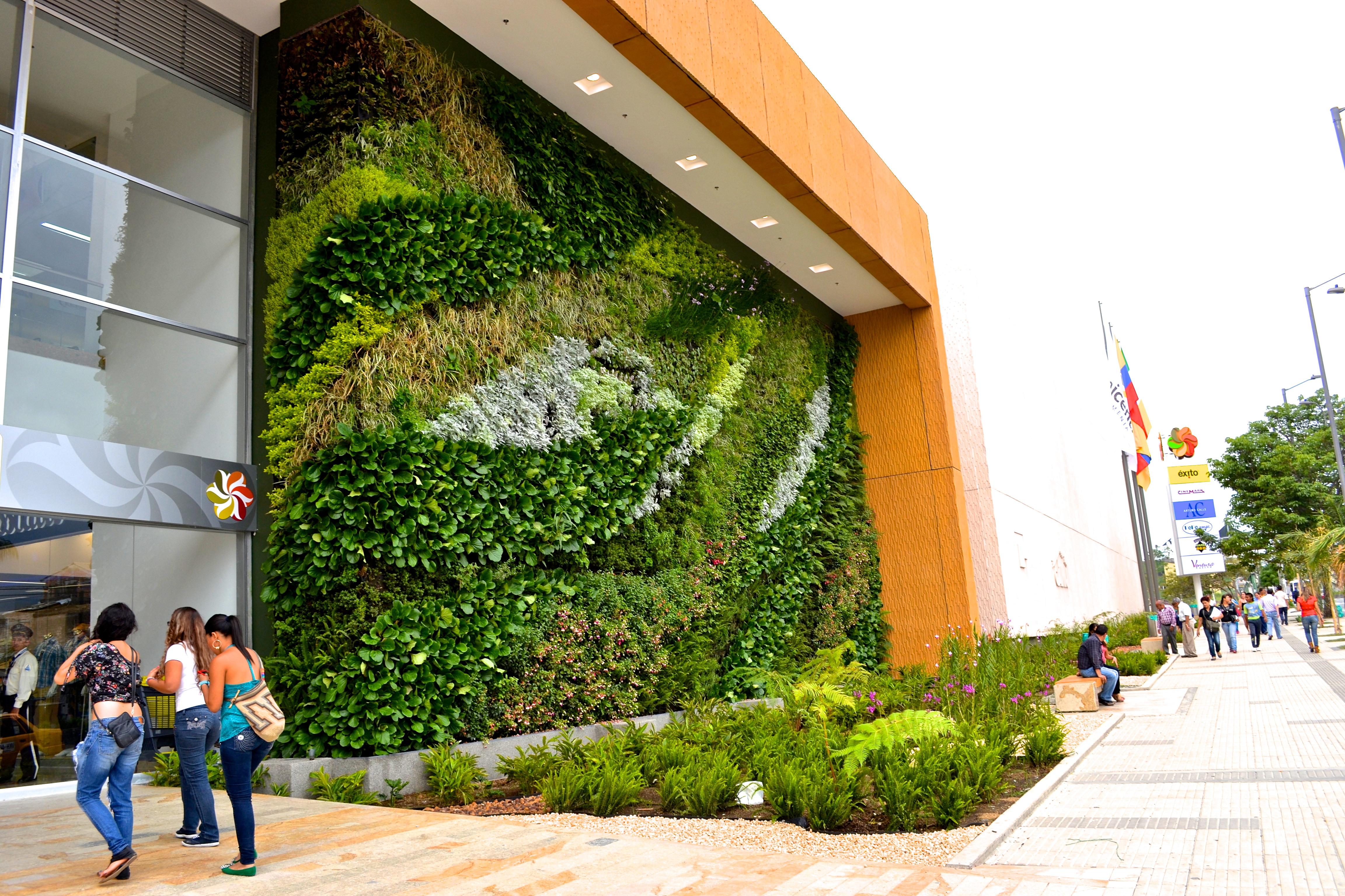 Plantas para jardines verticales recomendaciones for Jardin vertical exterior