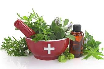 Plantas medicinales - Para qué sirven - Plantas-para.com