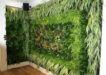plantas muro verde