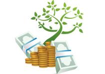 plantas para atraer el dinero
