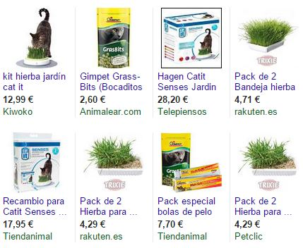 productos de hierba para gatos y plantas